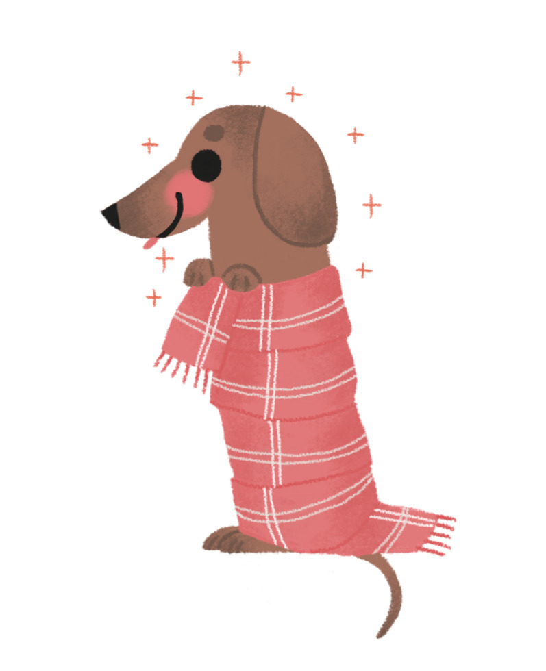 dog, illustration, scarf, wacom - mabelalarcon | ello