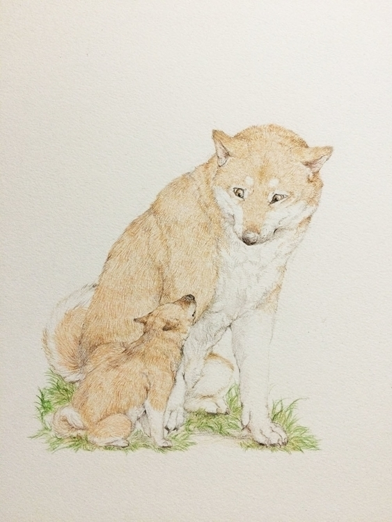 Untitled - drawing, coloredpencil - ayumiinagaki | ello