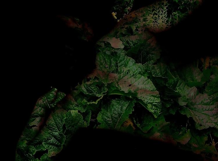 Dark Matter 1 - digitalart, photography - cylindergallery | ello