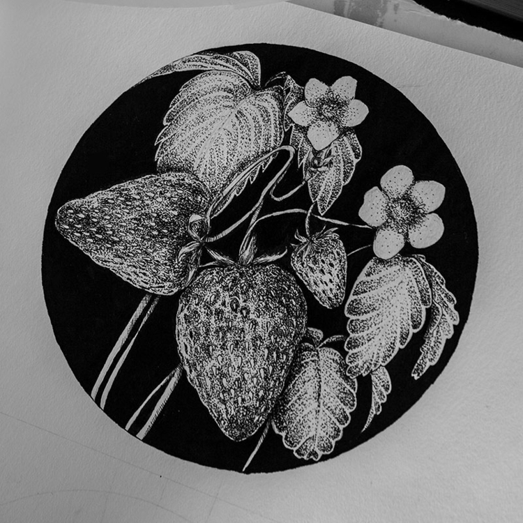 Strawberries - illustration, drawing - karolina-4327 | ello
