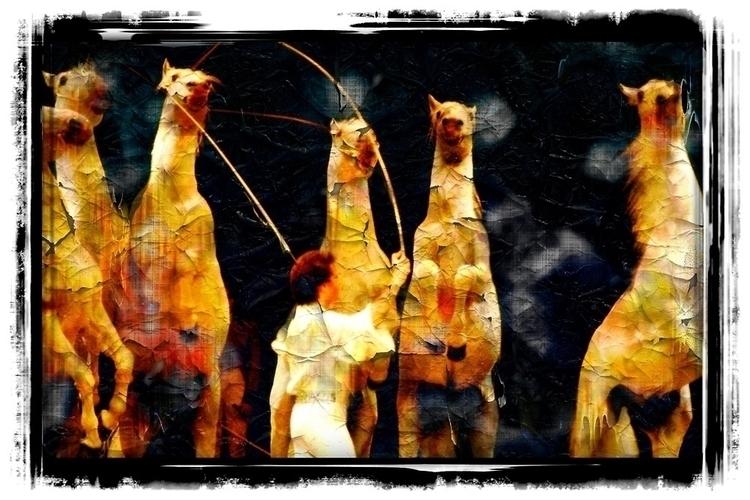 horse taming circus event Vienn - leo_brix | ello