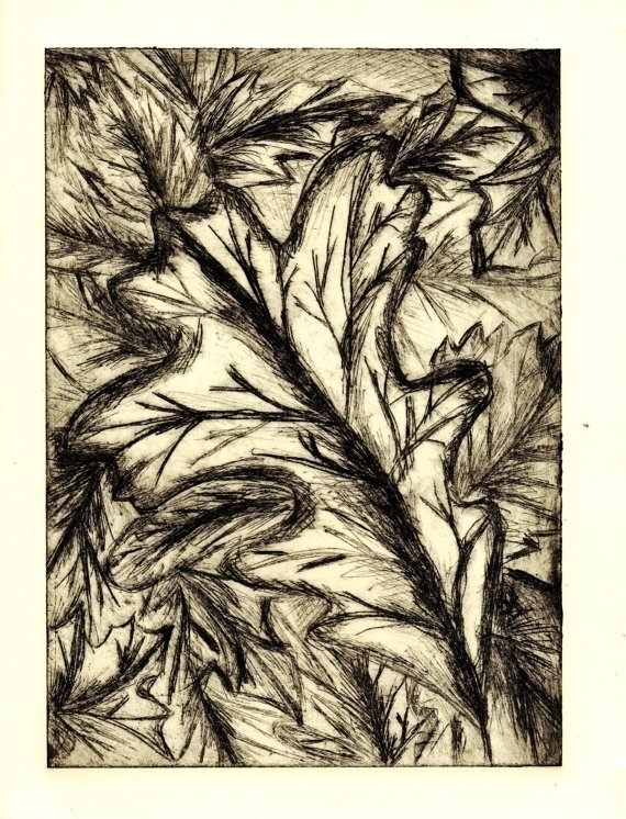 etching autumn leaves - print, copperetching - willrainier | ello