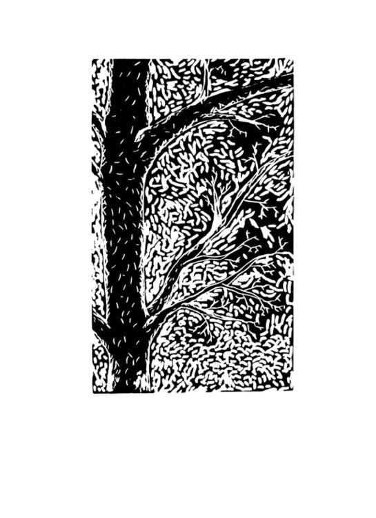 Hope - print, linocut, printmaking - willrainier   ello
