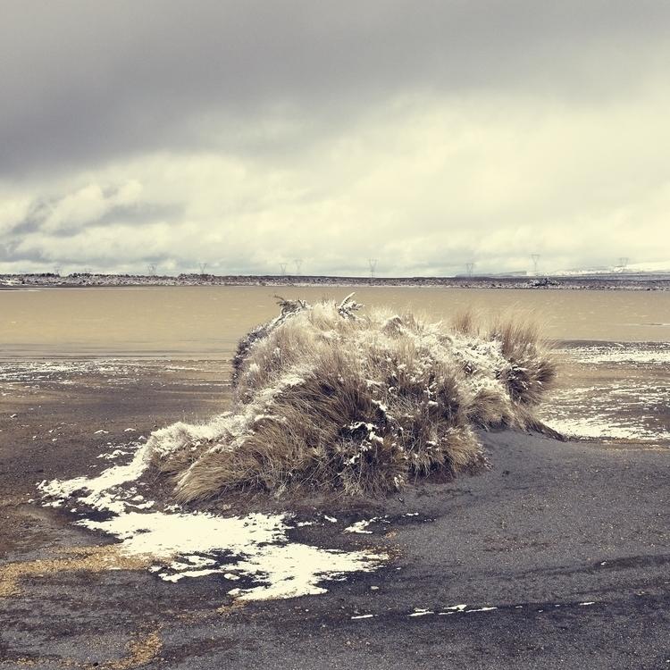 Rangipo - #landscape, newzealand - marham1160 | ello