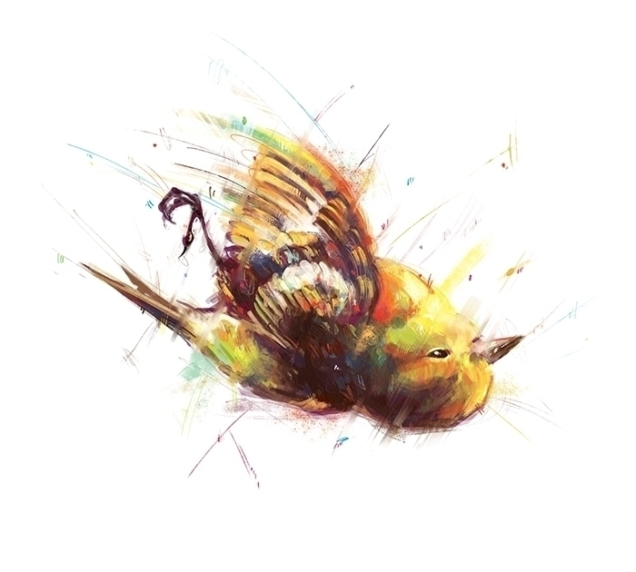 bird, death, illustration, colorful - marinaveselinovic | ello