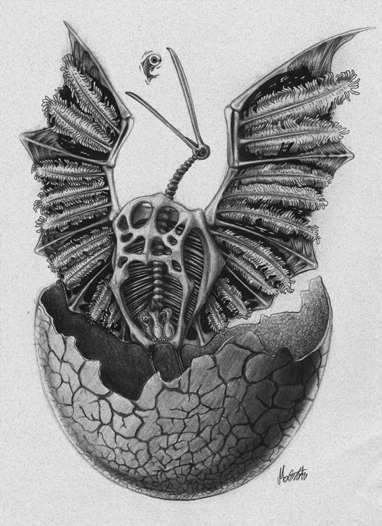 Archaeopteryx series illustrati - mostafa-1012 | ello