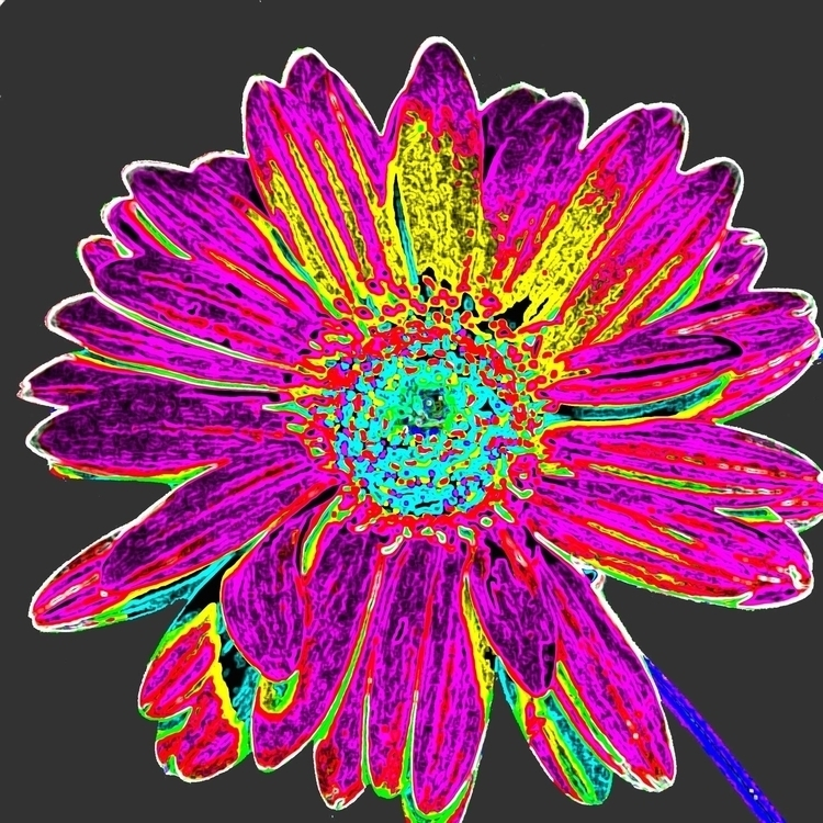 Twisted Tortured Daisy - pop, popart - catsnodgrass | ello