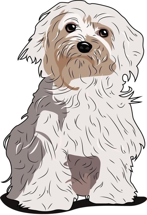 Maltese - dogs, vector - itsamebry | ello