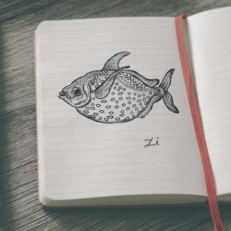 fish - illustration, drawing, ink - zizilka | ello