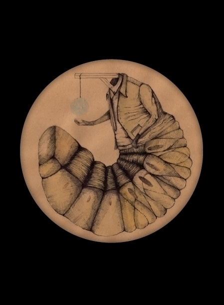 larve, illustration, drawing - stetocefalo | ello