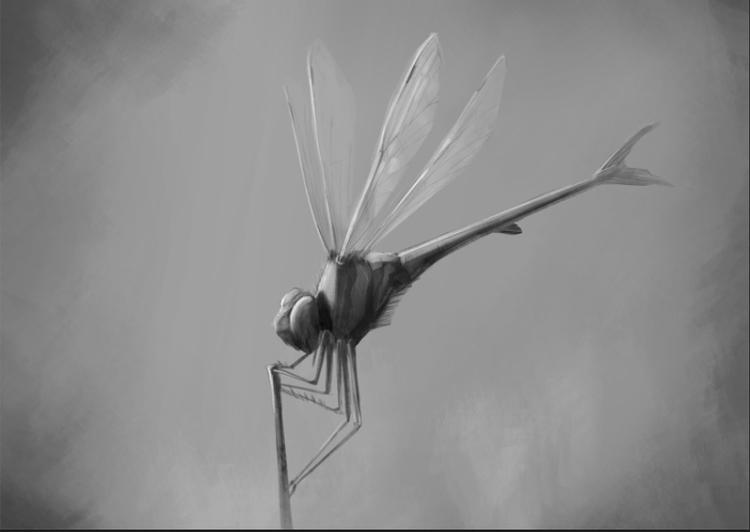 wip, dragonfly, fish, dragon - stetocefalo | ello