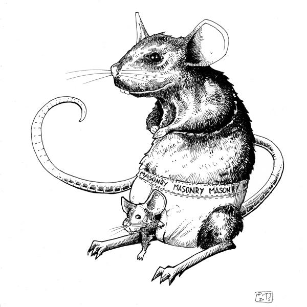 Mouse - illustration - pittrorotelli | ello