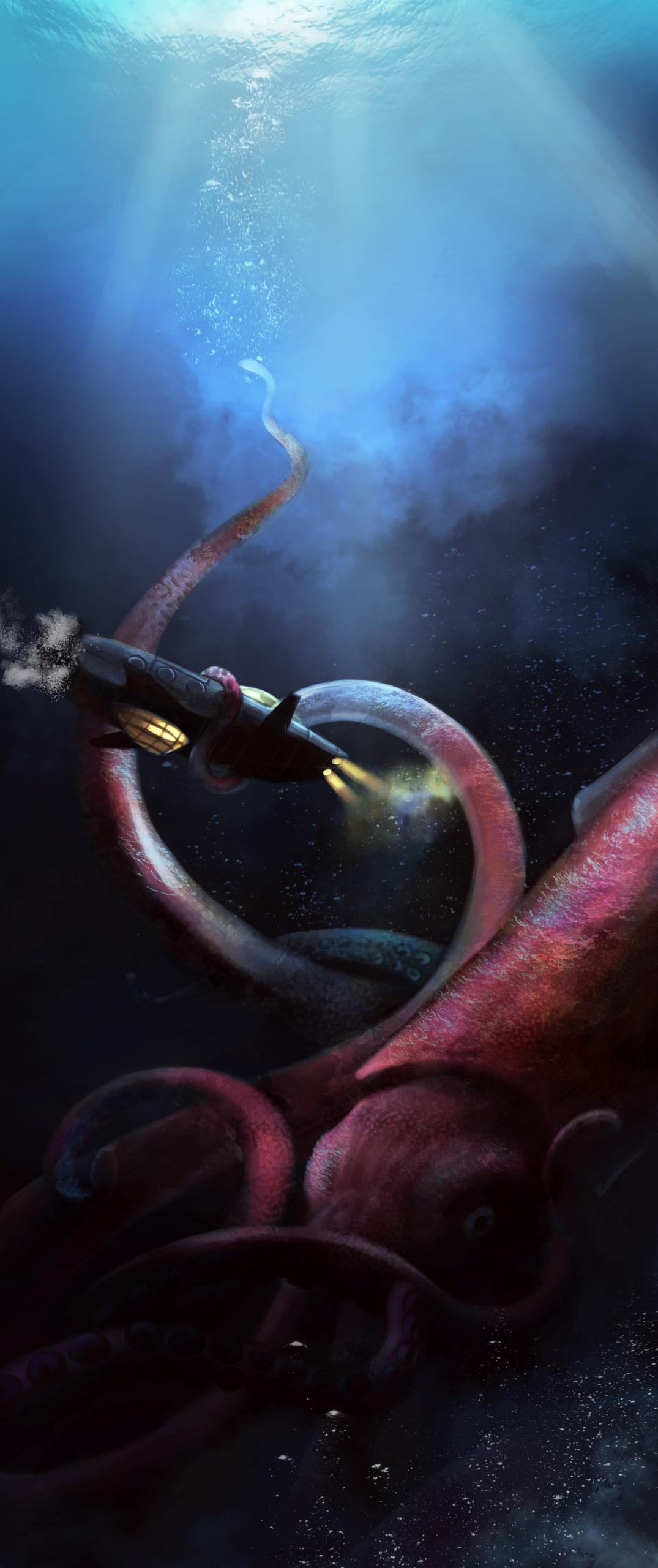 Nautilus giant calmar - illustration - aurorenivet | ello
