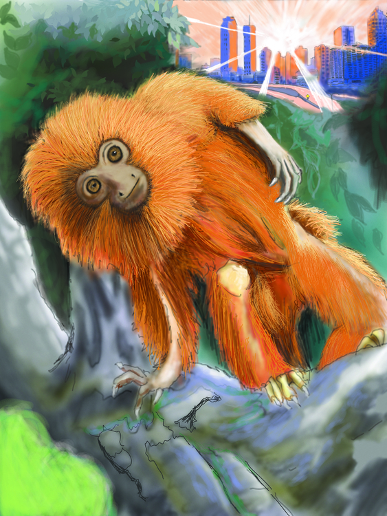 monkey, illustration, environment - thomasechapman | ello
