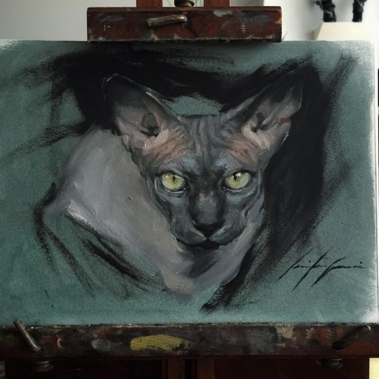 Alla prima cat paper - cats, sphynxcat - jen_art | ello