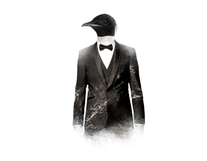 Blizzard Penguin - illustration - daniac | ello