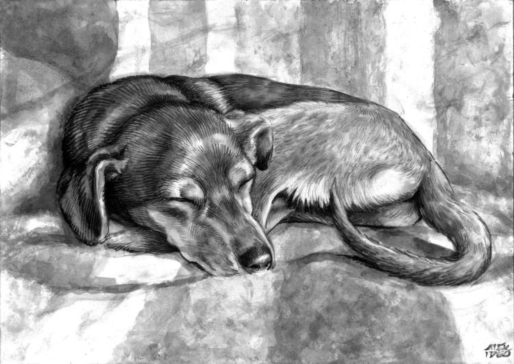 Dog - portrait, markers, ink, brush - alexideo   ello