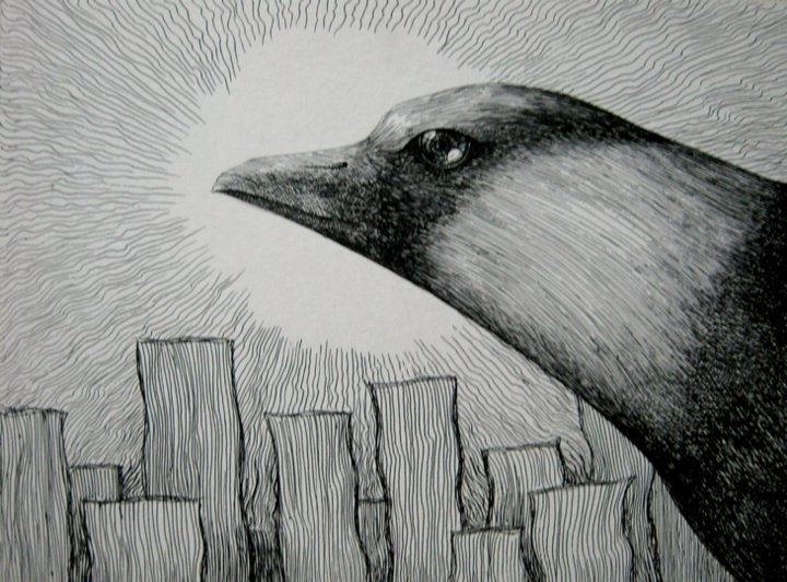 crow dark sun - drawing - lnpbr_b9 | ello