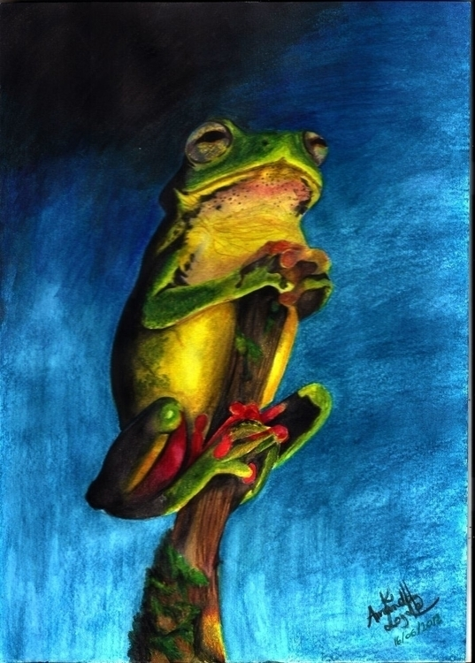 illustration, painting, frog - amandaloyolla | ello