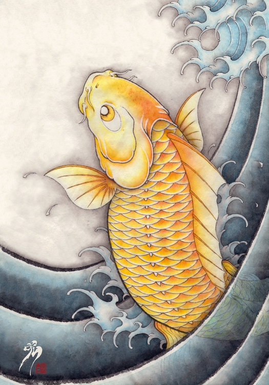 golden crap koi fish - illustration - kota_nakatsubo | ello