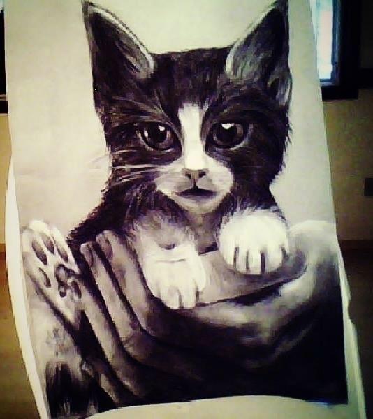 cat, illustration, painting, charcoal - amandaloyolla   ello