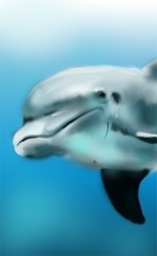 dolphin, painting, digitalpainting - roxanneeee | ello