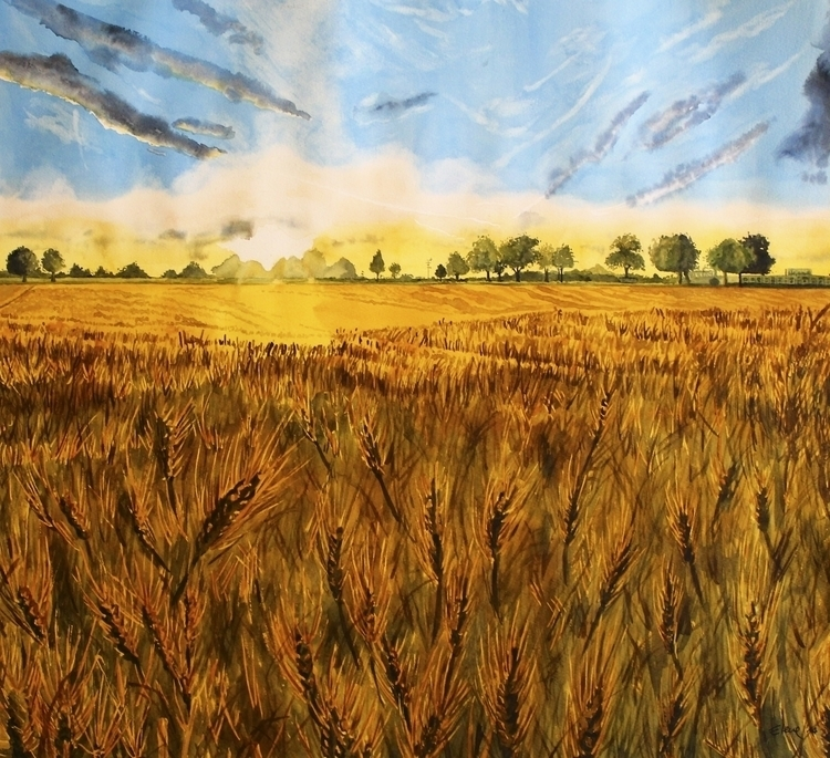 Summer Fields - landscape, summer - elenamantovan | ello