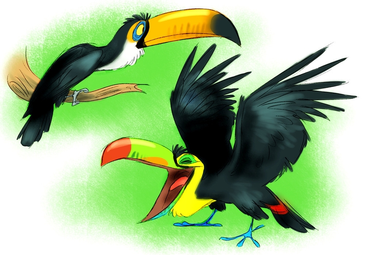 toucan, birds, animals - awamboldt | ello