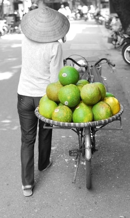 Vietnamese Pomelos - vietnam, fruit - cmvanclevephotography | ello