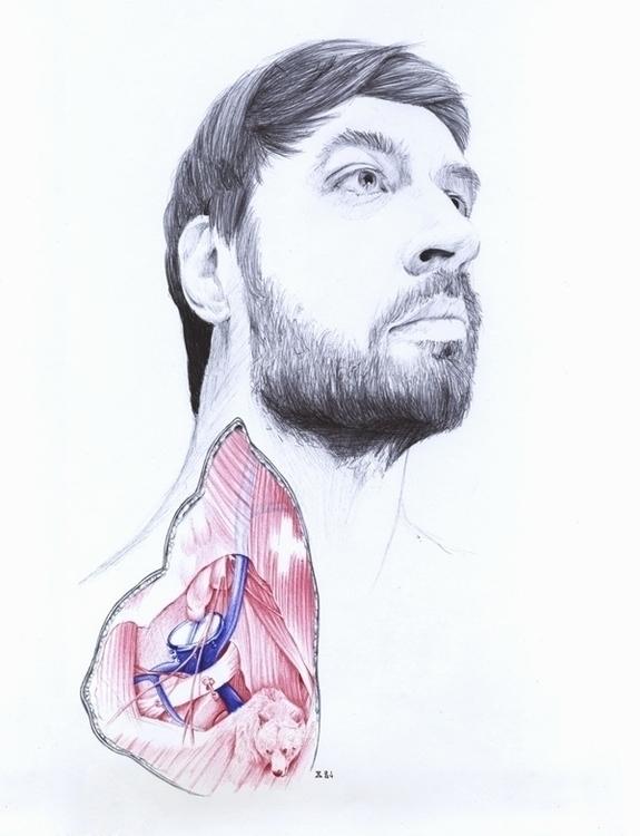 Anatomy - portrait, anatomy, man - zasa-6052   ello