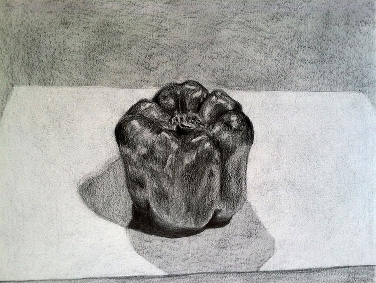 Pepper Study- pencil paper - pencildrawing - mallorycogut   ello