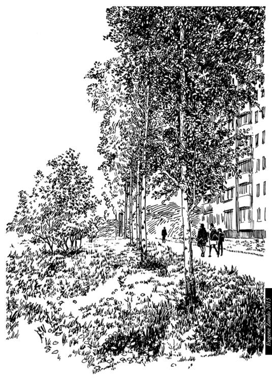 N14 - illustration - sarychev | ello