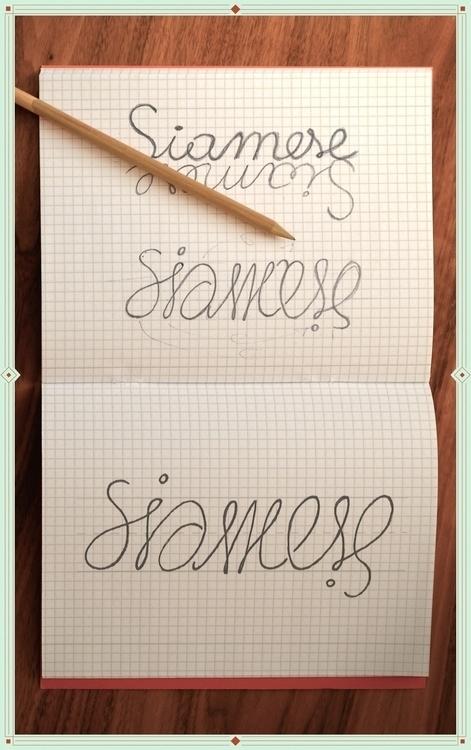 artwork thinking typographhy, t - matteodesogus | ello