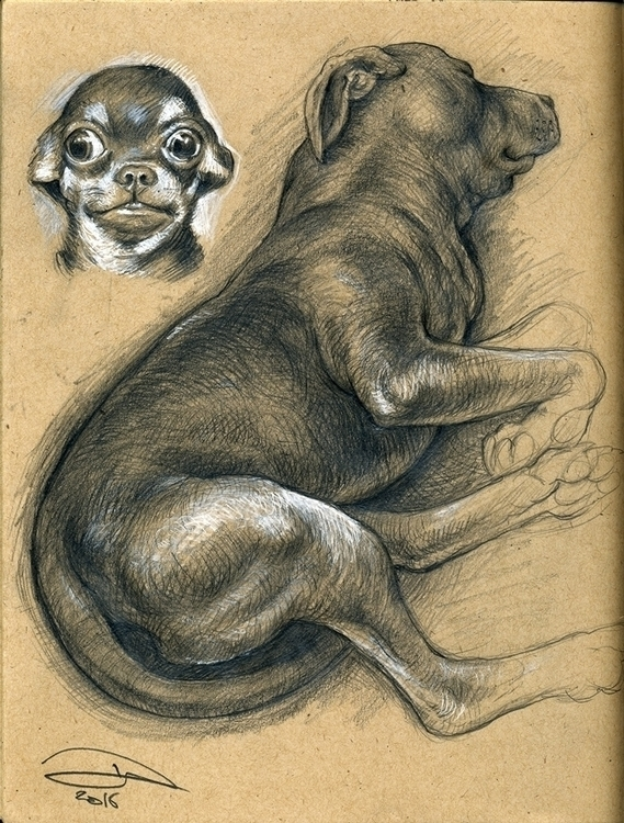 sketchbook: pencil studies Chih - baruchinbar   ello
