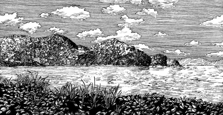 J45 - illustration - sarychev | ello