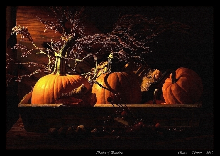 Basket Pumpkins: basket sized p - rsmithdigital | ello