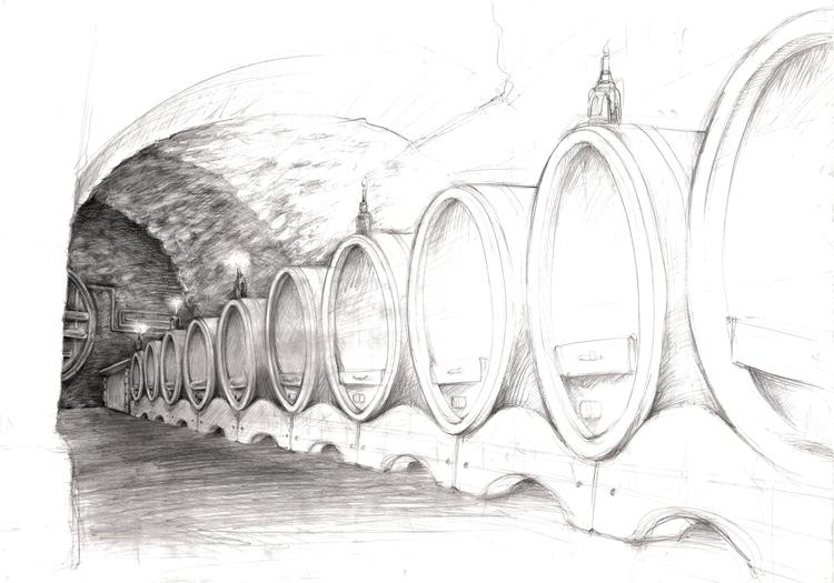 drawing wine cellar point view - shkedimoto | ello