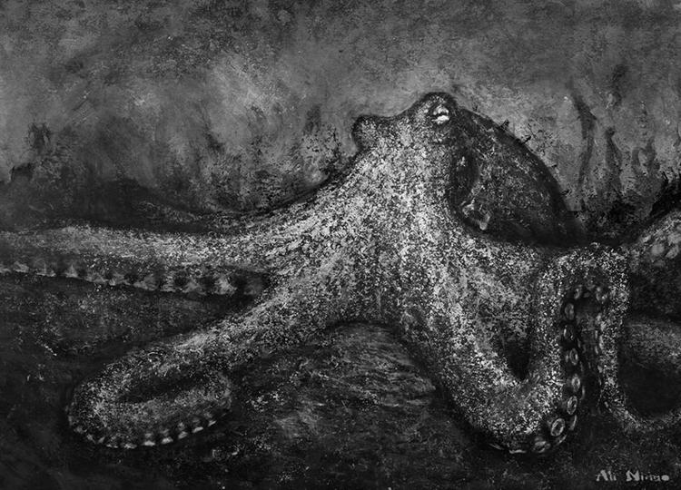 Octopus. Personal piece - octopus - alinimmo | ello