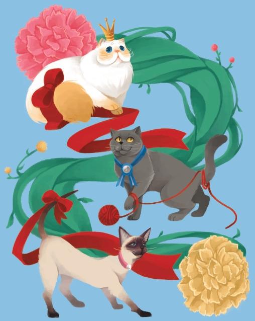 show cats - leedalangin-2857   ello