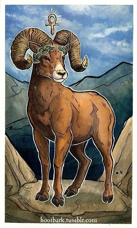 Emperor card! full ram top worl - hootbark-1142 | ello