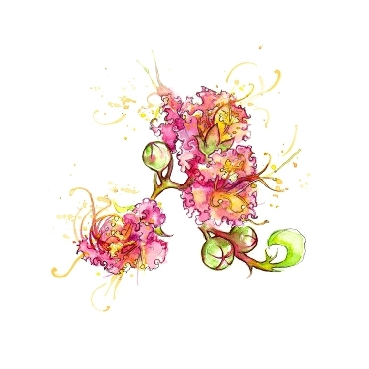 myrtle flowers Stylist magazine - amyhollidayillustration | ello