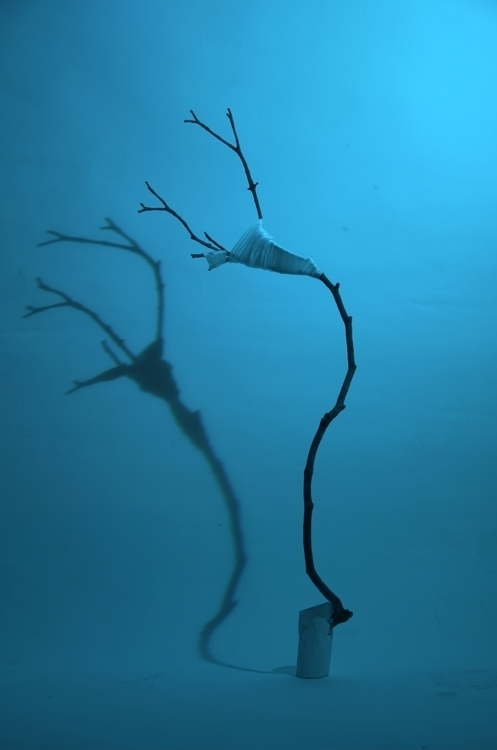 tree, figure, bonsai, shadow - ondrejbelica | ello