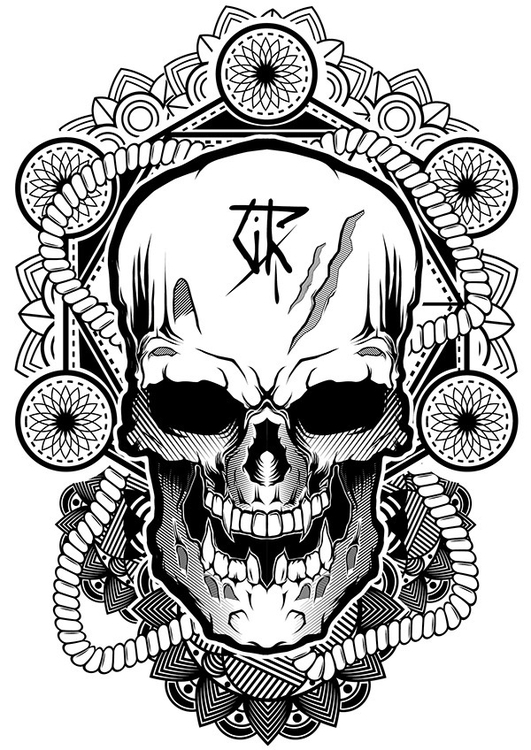 illustration, vector, skull, sketchbook - sabbathwalker-1362 | ello