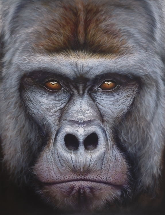 Gorilla Mountain Airbrushed Oil - eyanobi | ello
