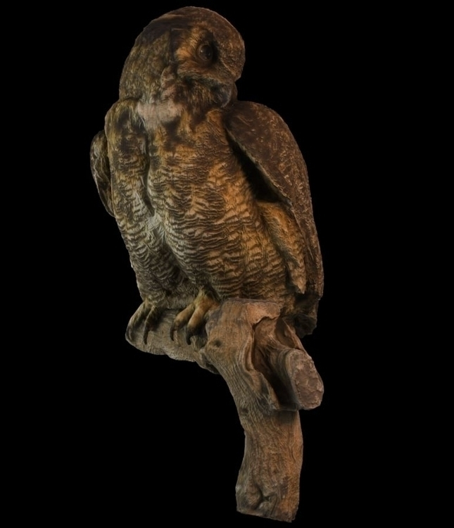Great Horned Owl - 3d, characterdesign - godstepson | ello