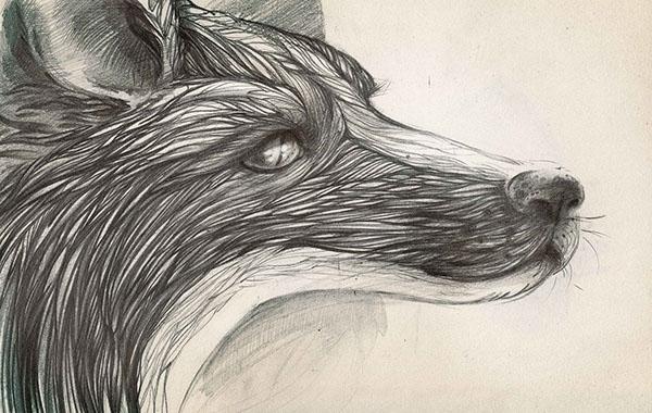 illustration, painting, drawing - helganota | ello