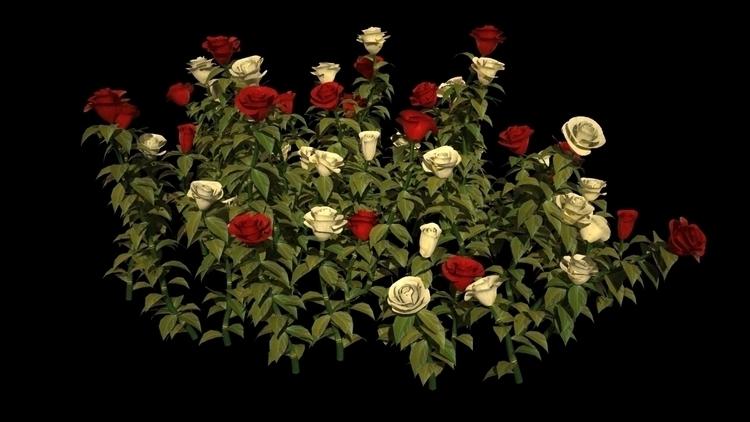 3D Roses - 3d - godstepson | ello