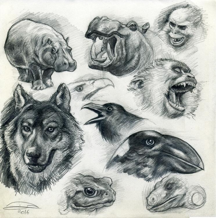 offer sale original animal draw - baruchinbar | ello