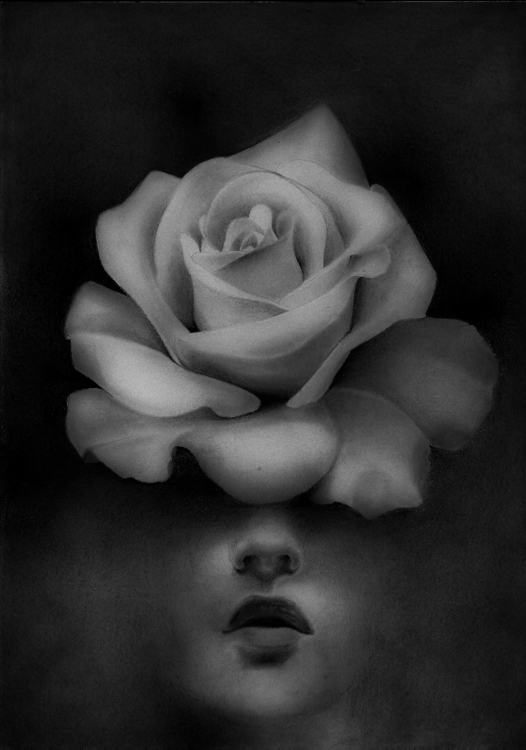 Pollination - illustration, drawing - chirimasmind | ello