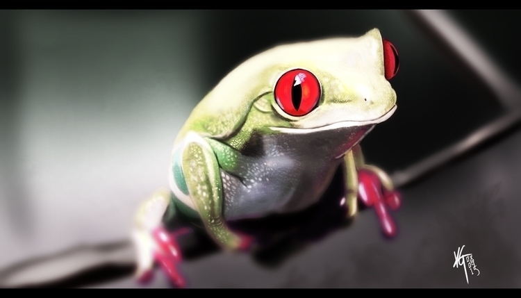Study red eyed tree frog. frogs - silenceinspace | ello